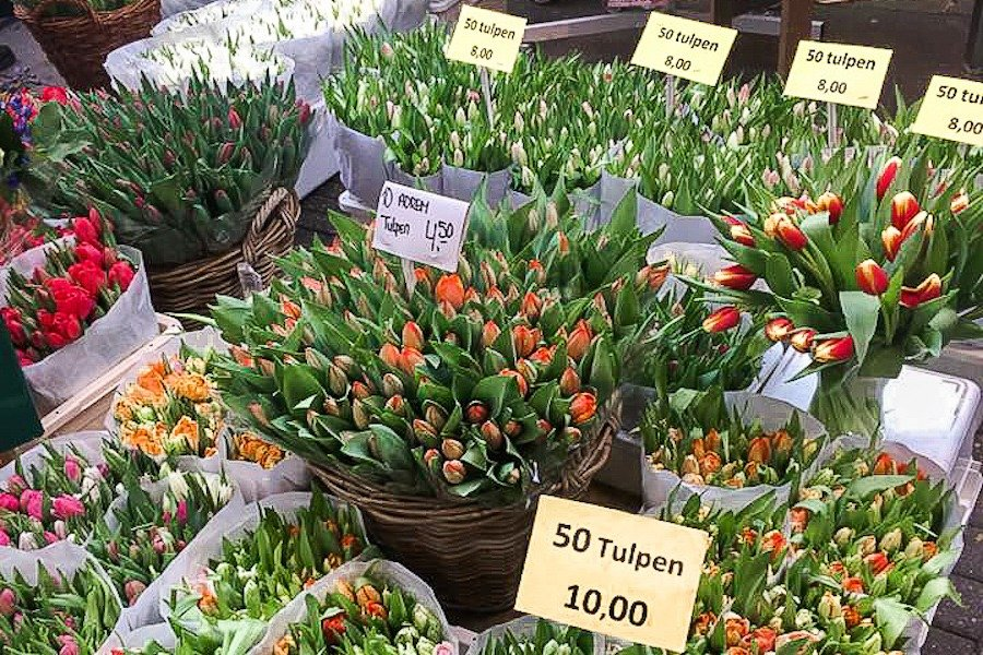 Various tulips in bouquets with prices
