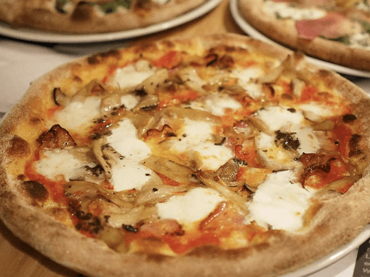 Cheese pizza with onions