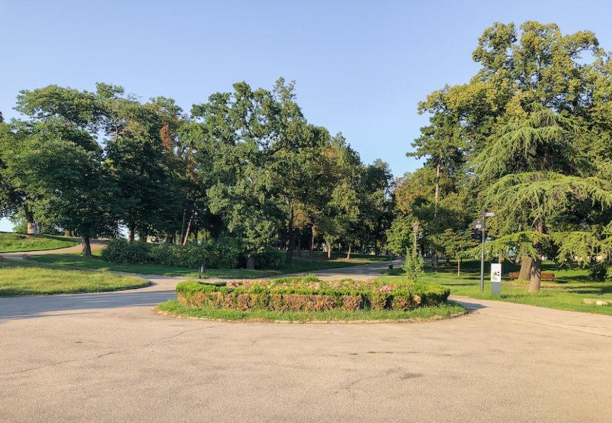 Green park in Belgrade