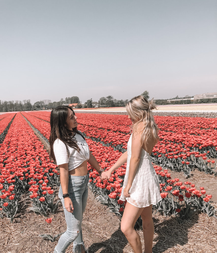 Two girls standing in front of pink coloured tulip fields