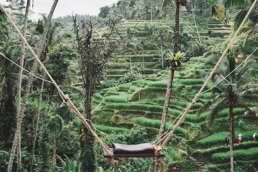One of the best things to do in Ubud, Ubud Swing
