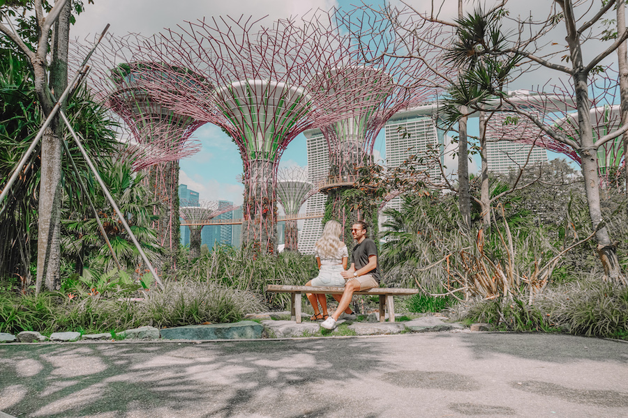 Things to do in Singapore for couples, visit the Super tree grove in Singapore