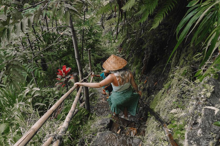 Jungle explorations in Lombok