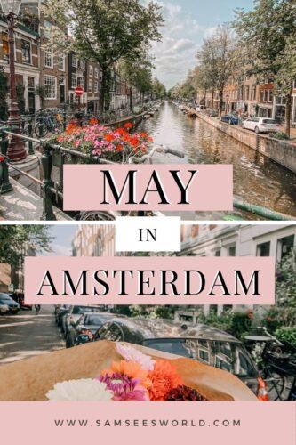 Amsterdam in May pin