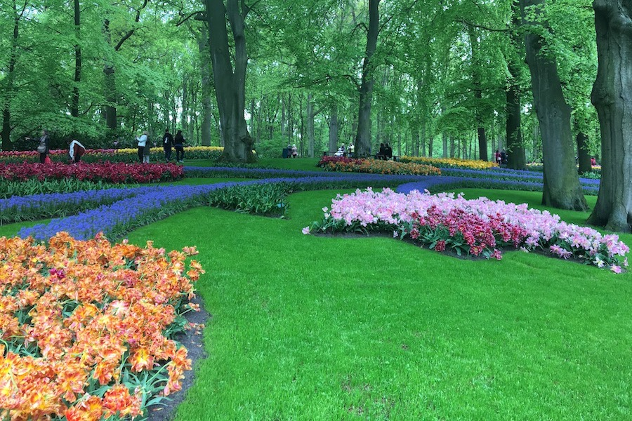Flower gardens in odd shapes and designs