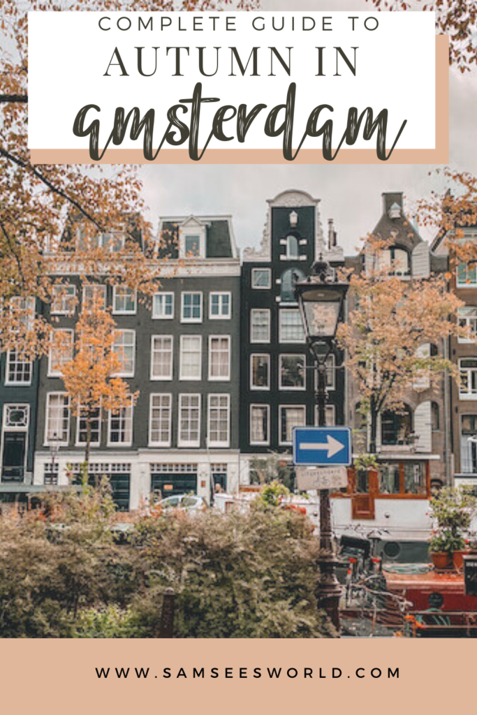 autumn in Amsterdam pin