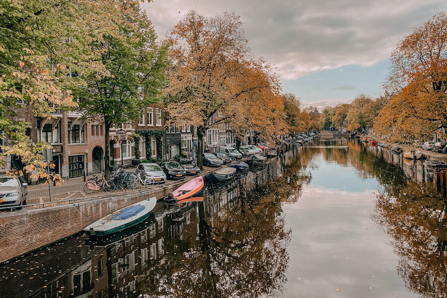 Canal in Amsterdam lined with orange trees with boats