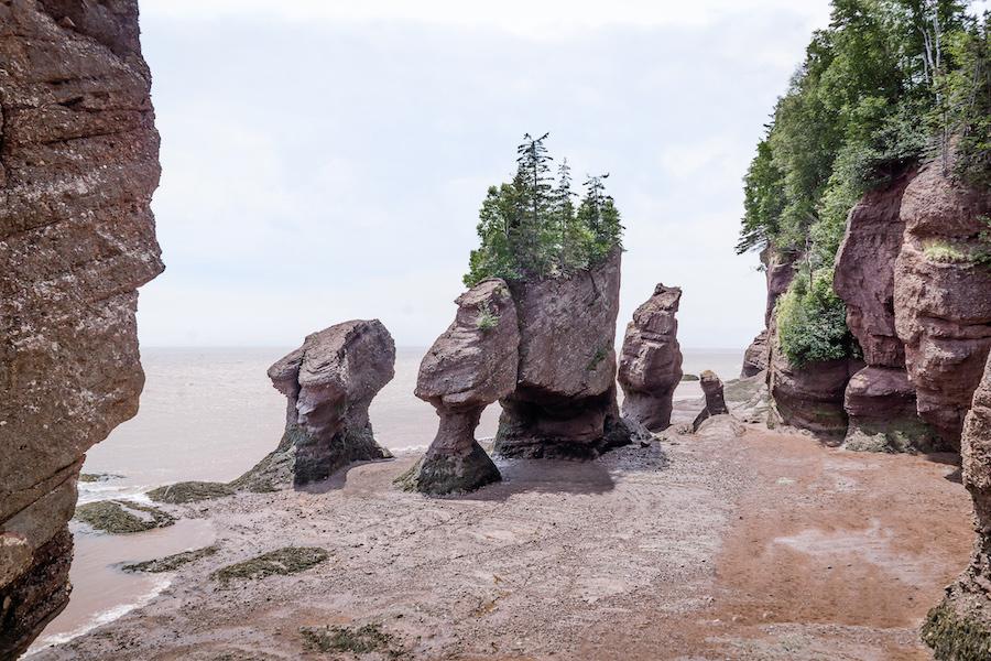 Rocks standing tall on the dry ocean floor