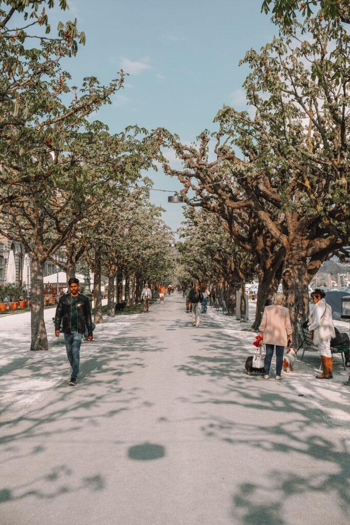Promenade in Lucerne