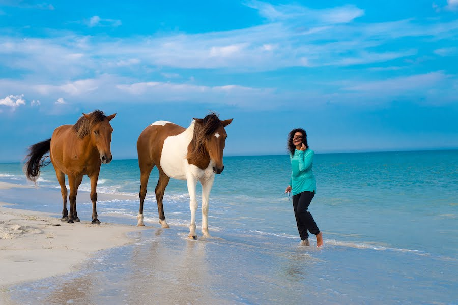 Beach with horses and a women