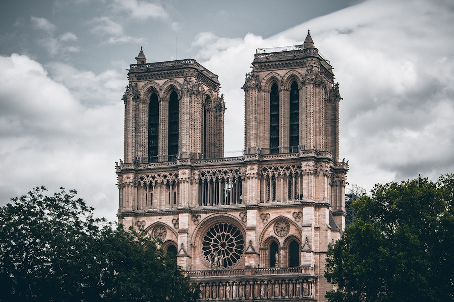 The Notre Dame in Paris behind trees.
