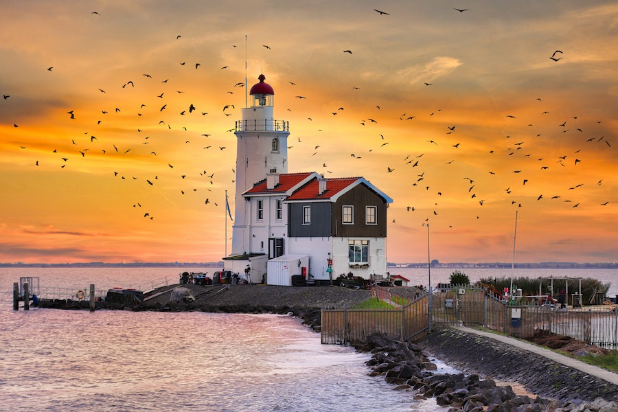 Lighthouse on an island surrounded by flying birds