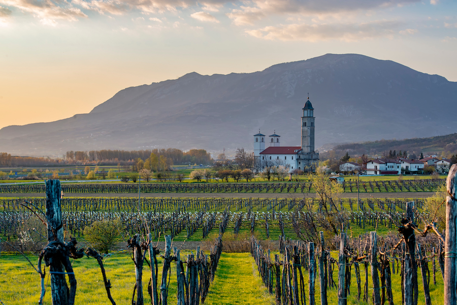 Beautiful spring evening countryside landscape in Vipava valley, Slovenia. Vineyards and mountains